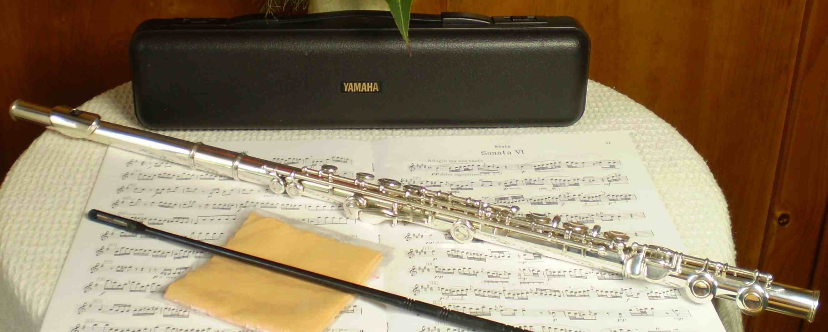Pin yamaha yfl 221 student flute silver plated used model for Yamaha yfl 221 student flute