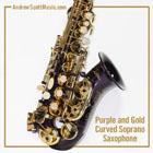 Curved Saxophone Purple