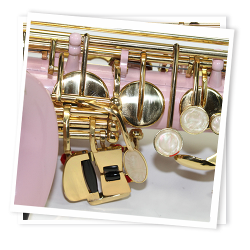 Cheap Pink and Gold Alto Saxophone